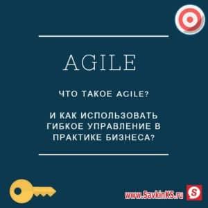 Внедряем Agile в управление компании