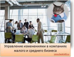 Управление изменениями в компаниях малого и среднего бизнеса