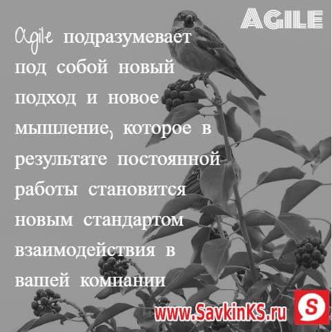 Определение Agile кратко и лаконично
